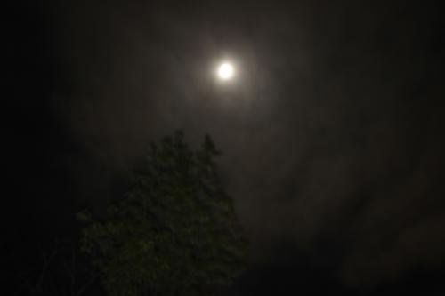Shadows of the Moon I